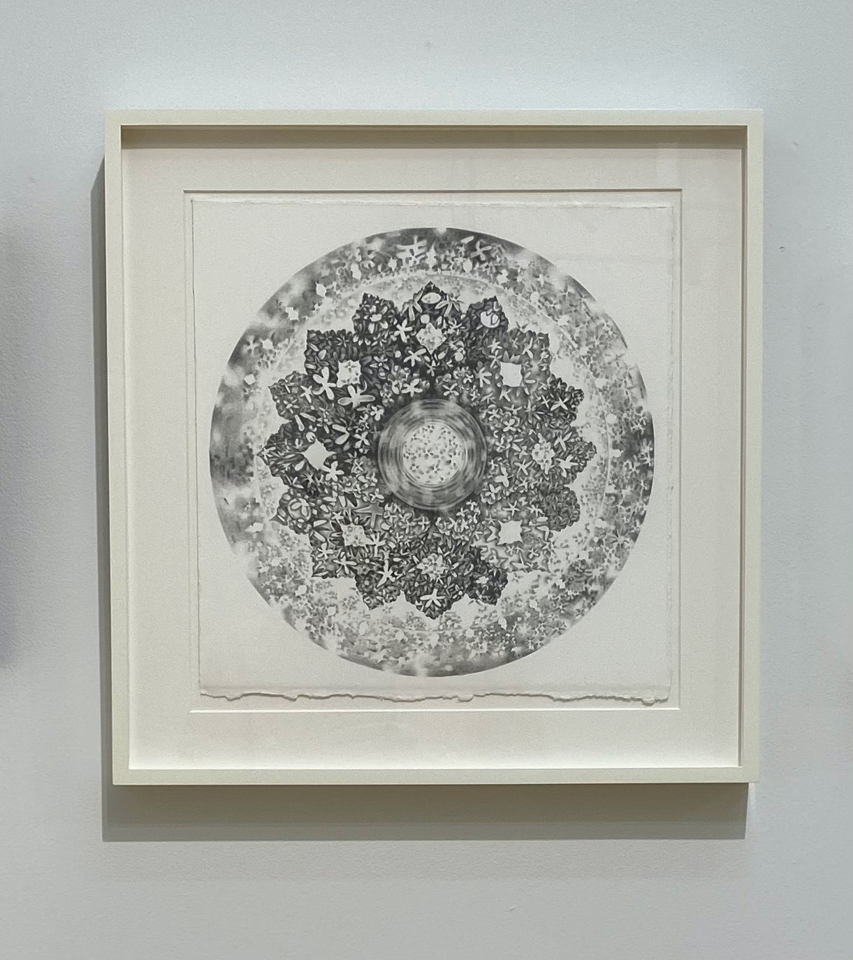 Shadow Rosette on the Face of the Moon by Alyssa Fanning